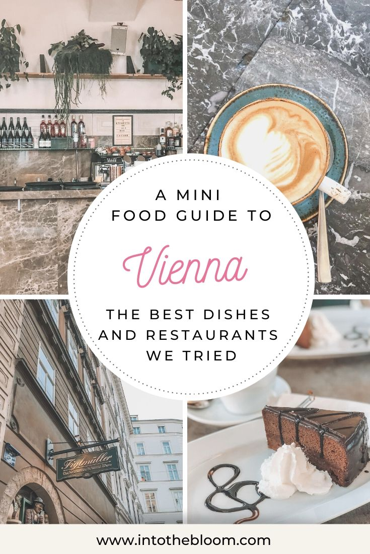 A blog post listing all the best dishes and restaurants we tried in Vienna, Austria