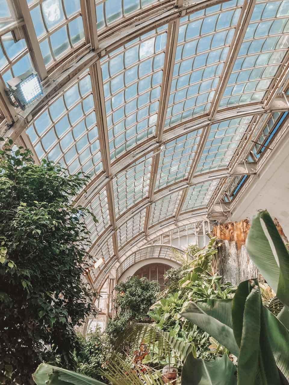 The inside of Schmetterlinghaus in Vienna, Austria