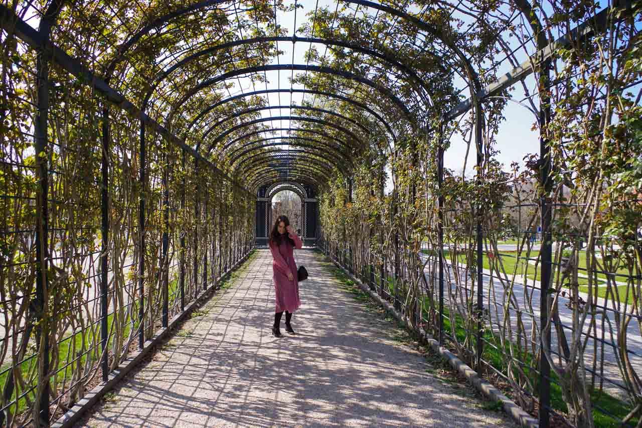 A girl standing under a pergola with vines in Schönbrunn Palace in Vienna, Austria